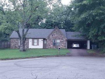 3895 BIRCHSHADE, Memphis, TN, 38115,