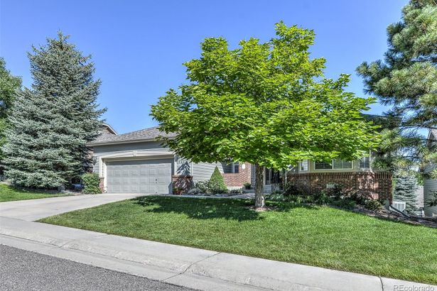 1045 Snow Lily Court