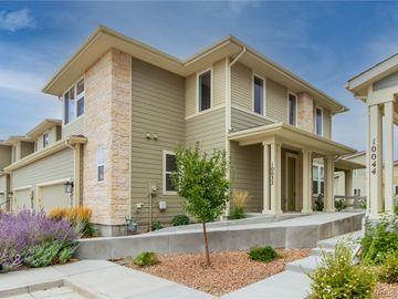 10032 Green Thicket Grove, Colorado Springs, CO, 80924,