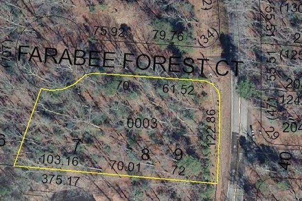 125 Farabee Forest Court