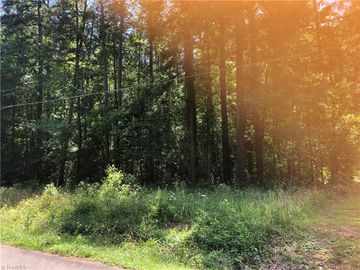 308 Martingale Drive, Gibsonville, NC, 27249,
