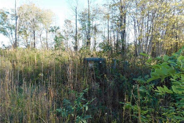 Lot #10 Pheasant Trail