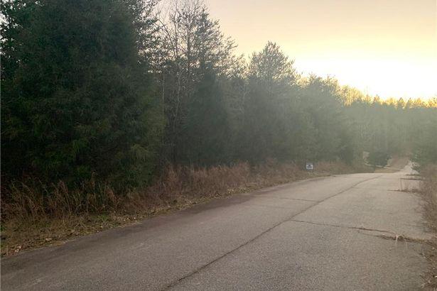 000 Blackberry Road