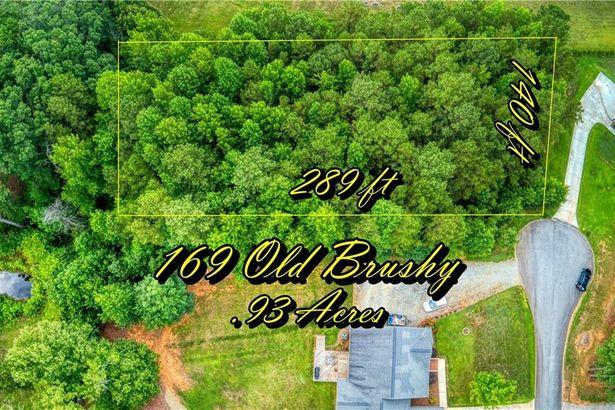 169 Old Brushy Drive