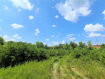 xx 10.57 acres S Friendship Road, Germanton, NC, 27019,