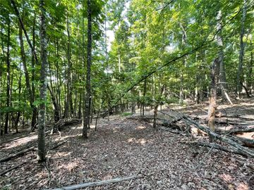 Lot 19 Overland Trail, Hays, NC, 28635,