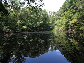 00 RR Ruritan Club Road, Roaring River, NC, 28669,