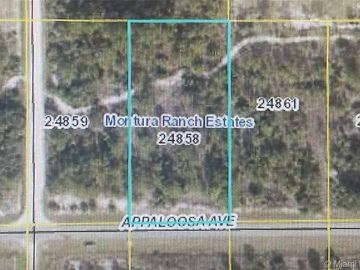 433 Appaloosa Ave, Clewiston, FL, 33440,