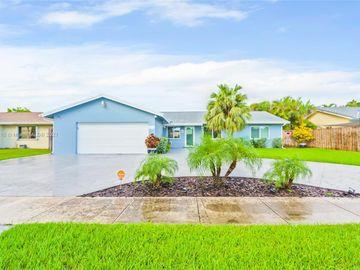 14055 SW 48th Ter, Miami, FL, 33175,
