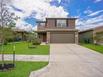 12322 Skyview Amber Court, Houston, TX, 77047,