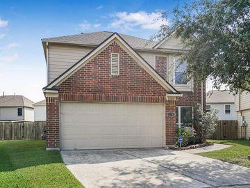 11742 Downey Violet Lane, Houston, TX, 77044,