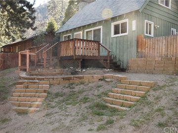 6010 Lake Drive, Angelus Oaks, CA, 92305,
