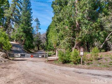 6200 Mountain Home Creek Road, Angelus Oaks, CA, 92305,