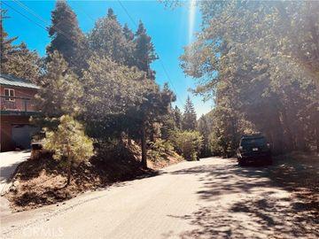 None Oak Avenue, Angelus Oaks, CA, 92305,