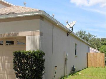 24909 VINTAGE COURT, Lutz, FL, 33559,