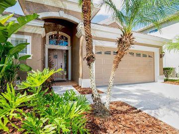 15610 N HIMES AVENUE, Tampa, FL, 33618,