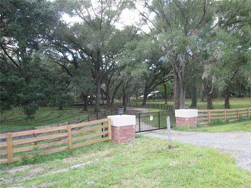 10576 S US HIGHWAY 301, Webster, FL, 33597,