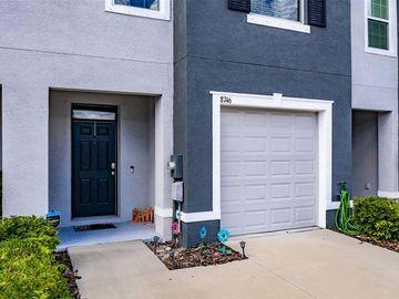 8746 FALLING BLUE PLACE, Riverview, FL, 33578,