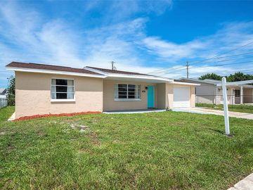 3439 MONTICELLO STREET, Holiday, FL, 34690,