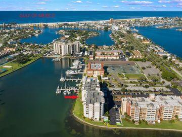 450 TREASURE ISLAND CAUSEWAY #203, Treasure Island, FL, 33706,