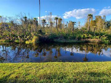 16323 ASHINGTON PARK DRIVE, Tampa, FL, 33647,