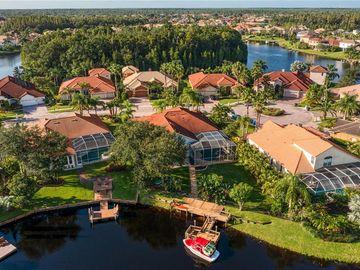 10845 BARBADOS ISLE DRIVE, Tampa, FL, 33647,