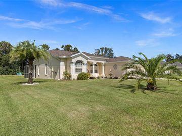 12125 PADRON BOULEVARD, Spring Hill, FL, 34609,
