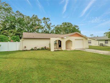 4607 TAMPA DOWNS BOULEVARD, Lutz, FL, 33559,