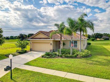 24510 CALUSA BOULEVARD, Eustis, FL, 32736,
