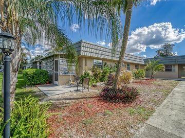 1802 BEDFORD TERRACE #181, Sun City Center, FL, 33573,