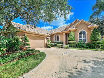 6119 FOXFIELD COURT, Windermere, FL, 34786,