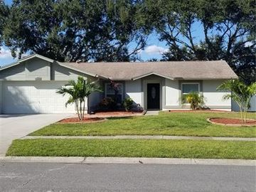 4403 BIRCHWOOD COURT S, Tampa, FL, 33624,