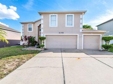 3289 WHITE BLOSSOM LANE, Clermont, FL, 34711,