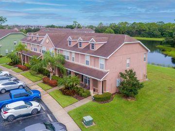 11641 DECLARATION DRIVE, Tampa, FL, 33635,
