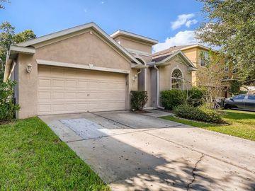 1528 EMERALD HILL WAY, Valrico, FL, 33594,