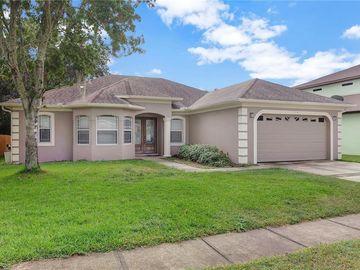 4113 WOODACRE LANE, Tampa, FL, 33624,