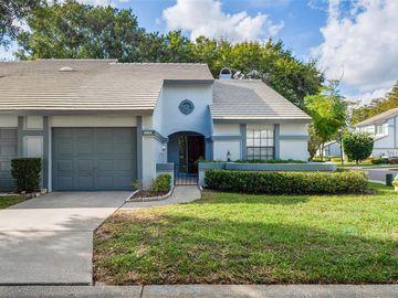 4164 BRENTWOOD PARK CIRCLE, Tampa, FL, 33624,