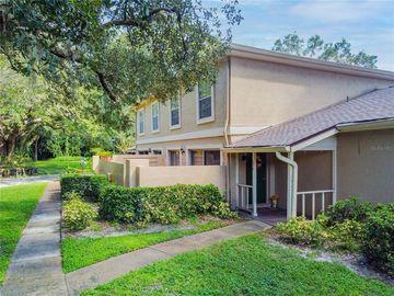 11854 RAINTREE DRIVE, Temple Terrace, FL, 33617,