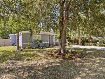 1312 DIVOT LANE, Tampa, FL, 33612,