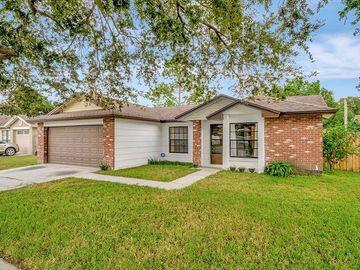616 STILLVIEW CIRCLE, Brandon, FL, 33510,