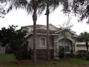 10130 DEERCLIFF DRIVE, Tampa, FL, 33647,