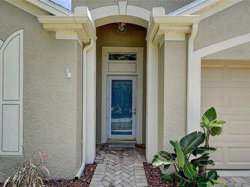 1758 BIARRITZ CIRCLE, Tarpon Springs, FL, 34689,