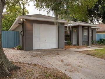 3802 N TAMPA STREET, Tampa, FL, 33603,