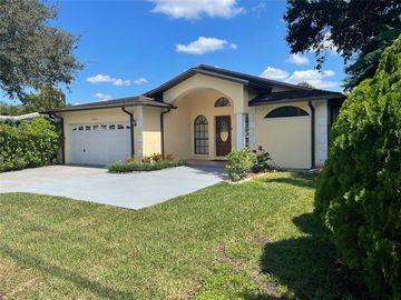 10411 N 46TH STREET, Tampa, FL, 33617,