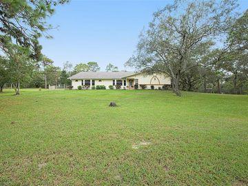 7065 SMITHFIELD AVENUE, Brooksville, FL, 34609,
