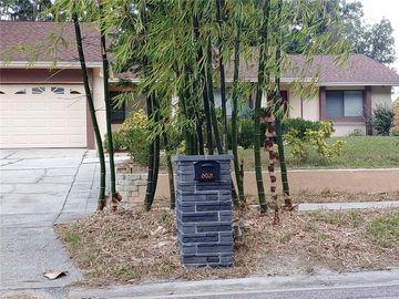 8021 APPLEHILL COURT, Orlando, FL, 32810,
