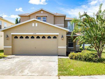 10301 WILLIAM OAKS ROAD, Riverview, FL, 33569,