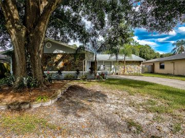 15705 SQUIRREL TREE PLACE, Tampa, FL, 33624,