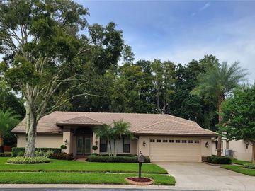 3359 JADEWOOD CIRCLE, Tarpon Springs, FL, 34688,