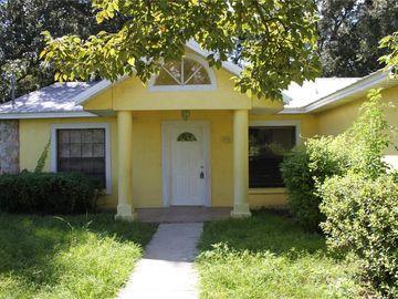 1110 MERCER LOOP, Plant City, FL, 33567,